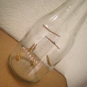 """1000 litros de inclusión """"A bottleful of miracles"""""""